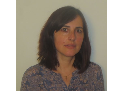 SRP 2017 Faculty Profile: Dr. Alina Lazar, Youngstown State University
