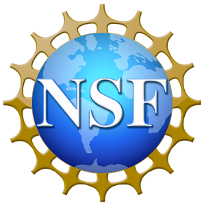 2020 NSF Math Sciences Graduate Internship