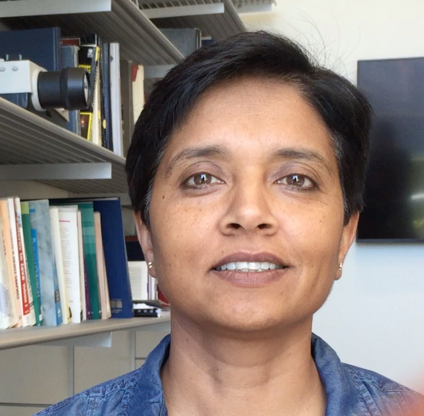 Software Productivity and Sustainability for Science and Engineering, Anshu Dubey, Argonne National Laboratory